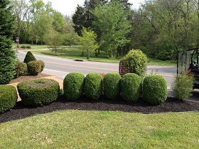 Epperson's Lawn and Landscape serves all of Joelton, TN and Bellevue, TN After Landscaping 3
