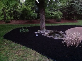 Epperson's Lawn Care and Landscape serves all of Brentwood, TN After Landscaping 4